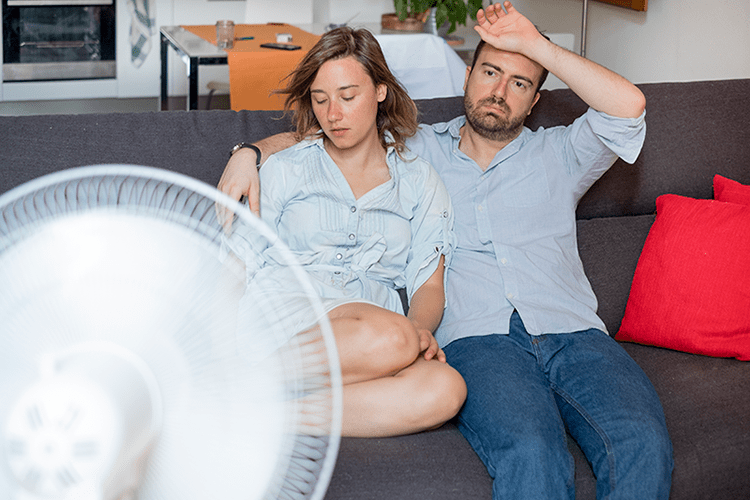 How Can You Manage Your Home's Humidity?